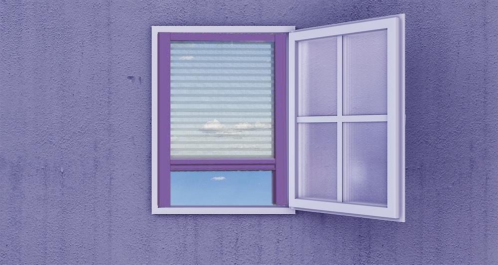 mosquitera-plisada-ventana